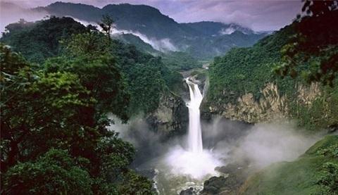 Rừng mưa Amazon