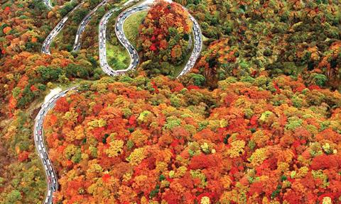 Nhật Bản vào thu nhuộm đỏ sắc lá.