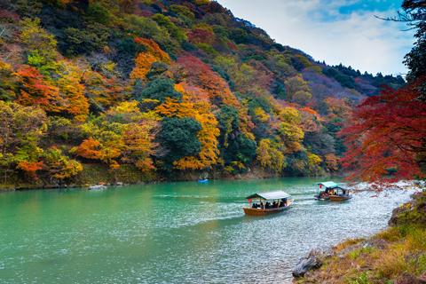 Chuyến du lịch mùa thu lãng mạn Nhật Bản trong 4 ngày.