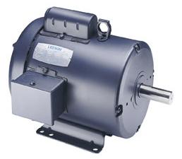 Leeson Electric Motor