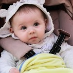 Baby Stroller Portrait Curiosity  - BLACK17BG / Pixabay