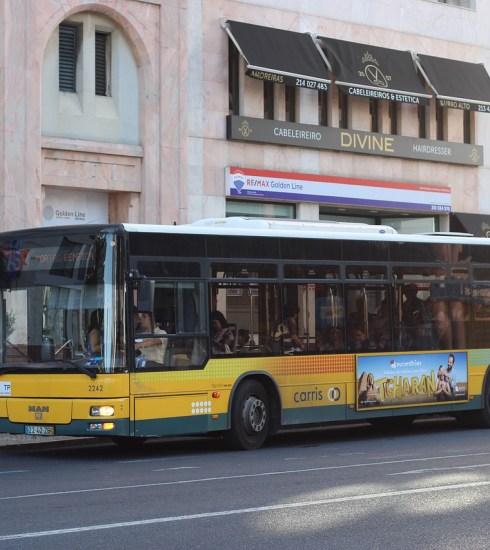 Bus Vehicle Road Street  - AutocarrosDeLisboa / Pixabay