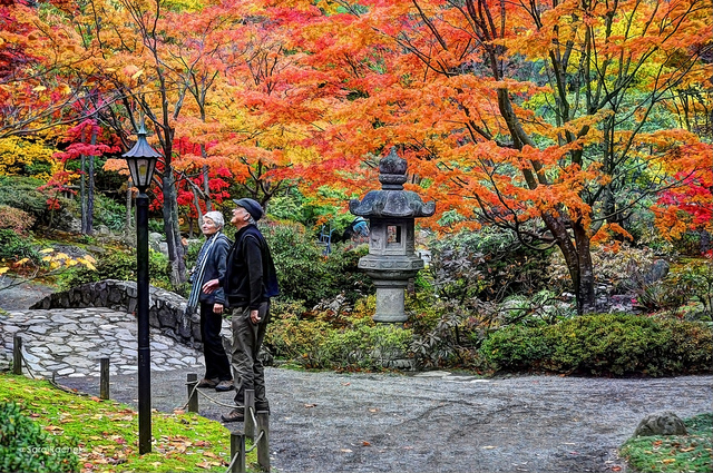 The Unexpected Costs of Retirement - Couple Enjoying Walk In Park
