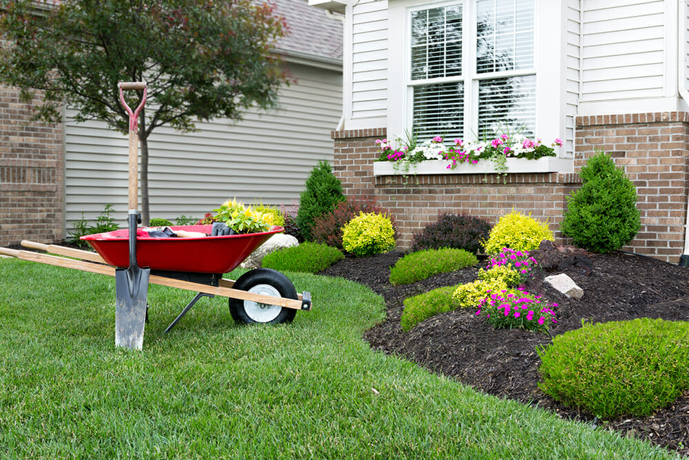 Smart front garden with flower bed and manicured lawn