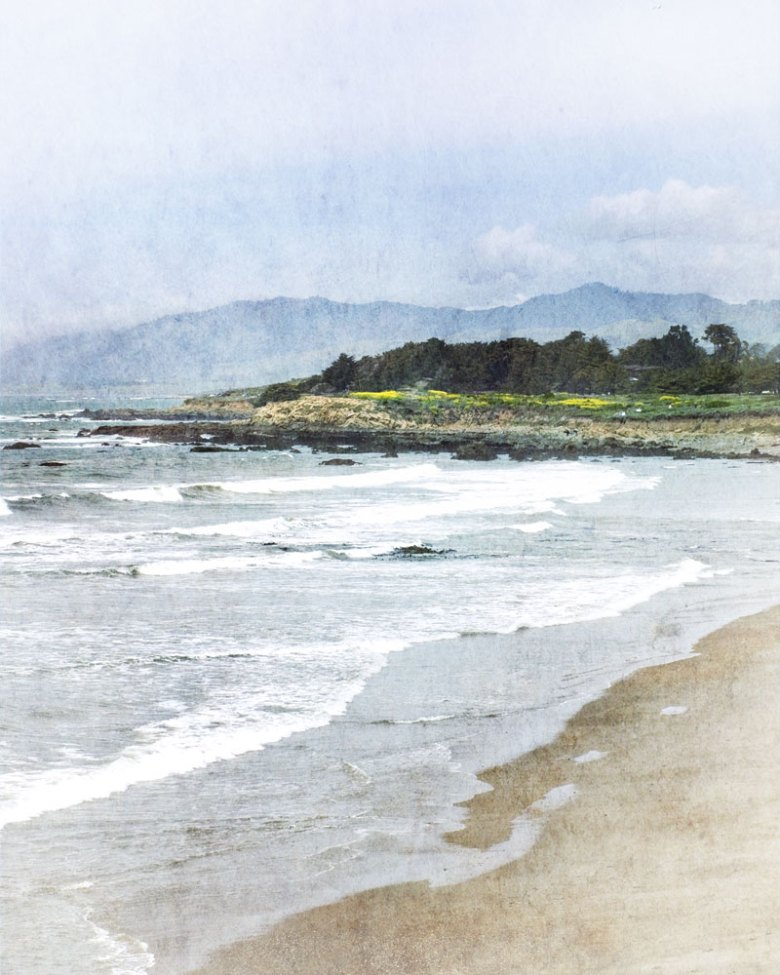 Central Coast, CA Spring 2013