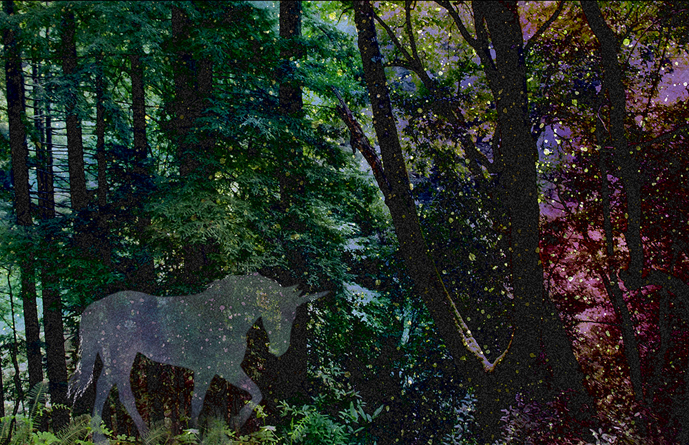 Photomanipulated woods with stars and galaxy, a ghostly unicorn in front