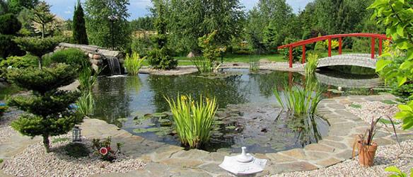 creation et curage de bassin aux