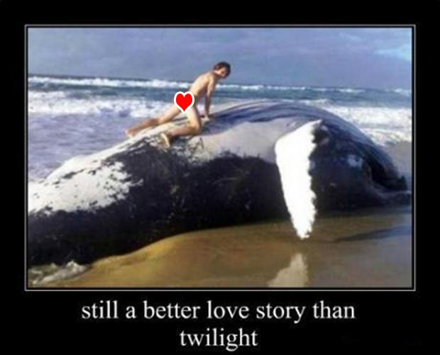 dead whale, still a better love story than twilight