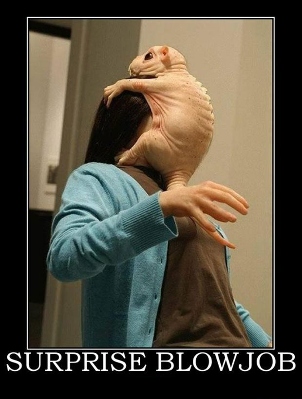 funny demotivational posters, aliens