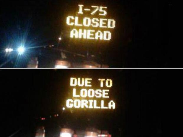 funny road signs (9)