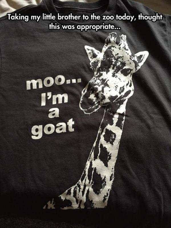 moo I'm a goat