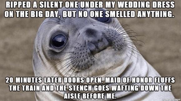 funny wife wedding dress