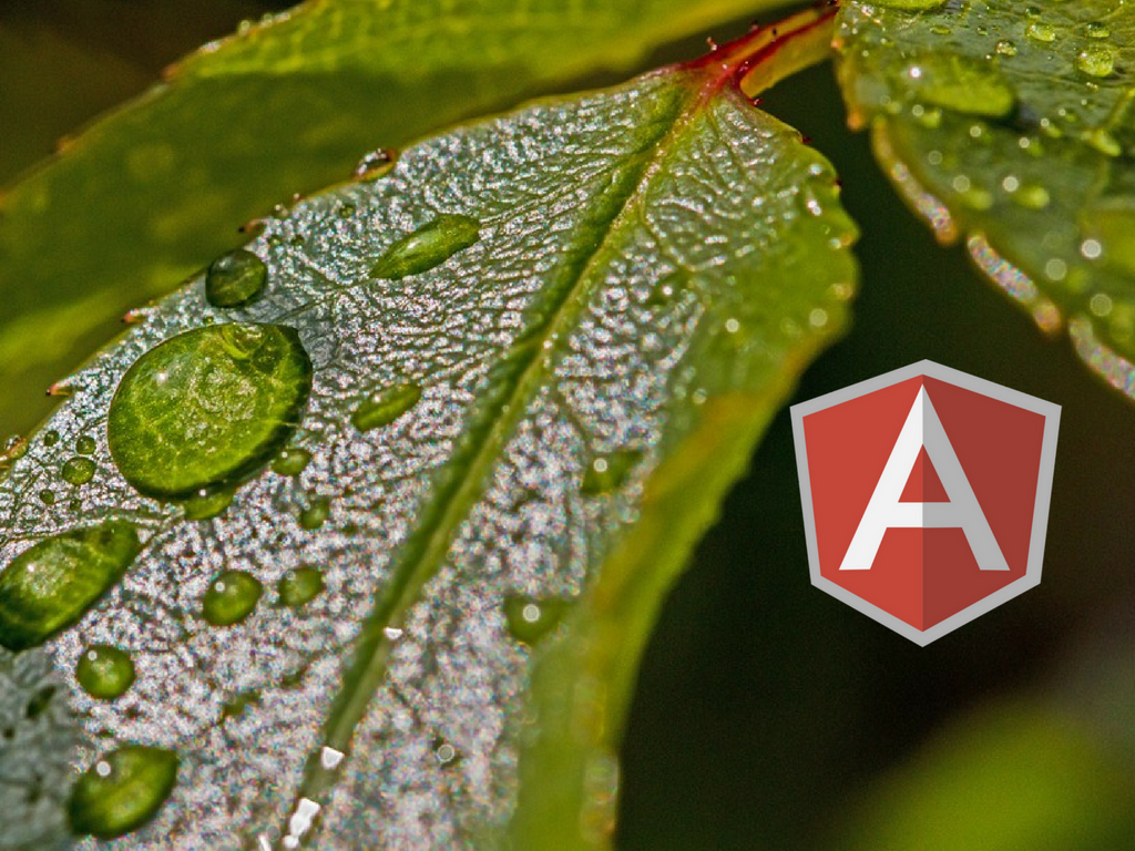 Create You own CMS with Angularjs From scratch