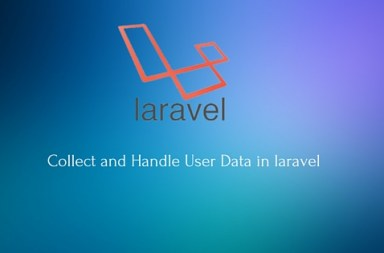Collect and Handle User Data in laravel