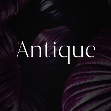 Antique - Luxury Serif Typeface Font