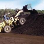 Cofiring Biomass PLTU Tekan Konsumsi Batu Bara