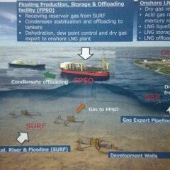 Mau Bangun Pabrik Petrokimia Dekat Blok Masela, Pupuk Indonesia Minta Harga Gas Sesuai Aturan