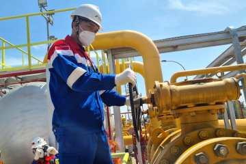 Ada Potensi Besar Selain Masela, Pertagas Siap Ekspansi Bisnis Gas di Maluku