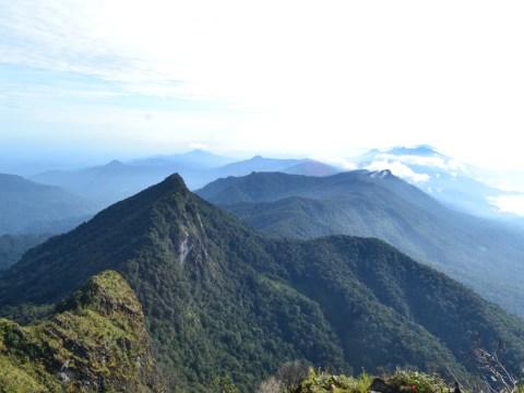 """Cadangan Karbon Biru Berlimpah, Indonesia Berpotensi Sebagai """"Climate Super Power"""""""