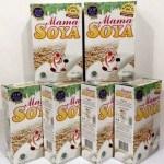 Mamasoya Susu Kedelai Booster ASI
