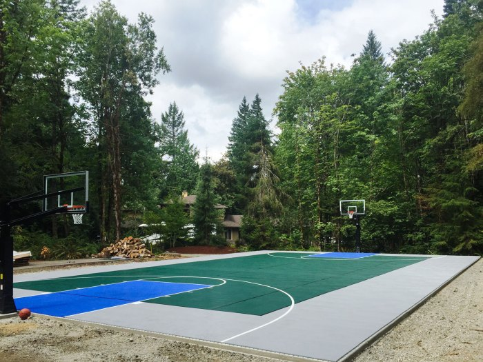 Gray, evergreen, and blue backyard multi-court with lines