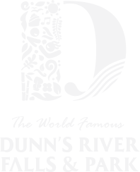The World Famous Dunns River Falls