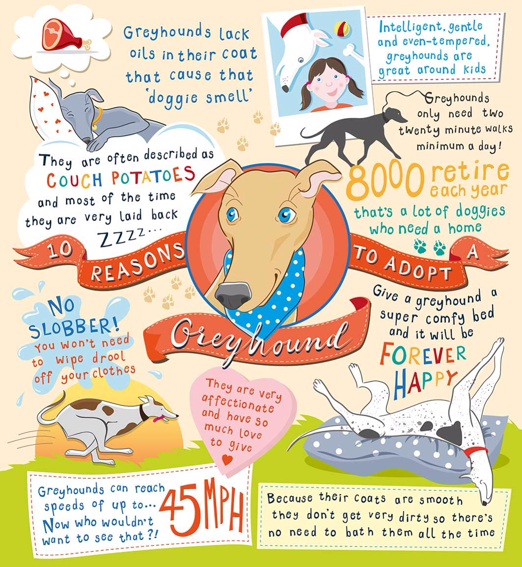 Why greyhounds?