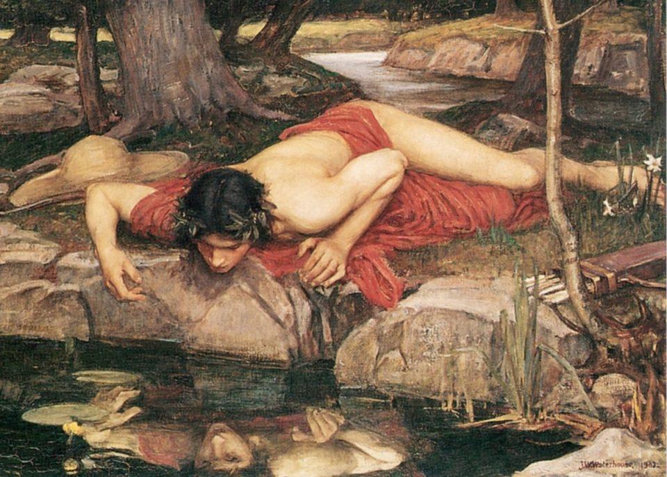 narcisus (1200x858)