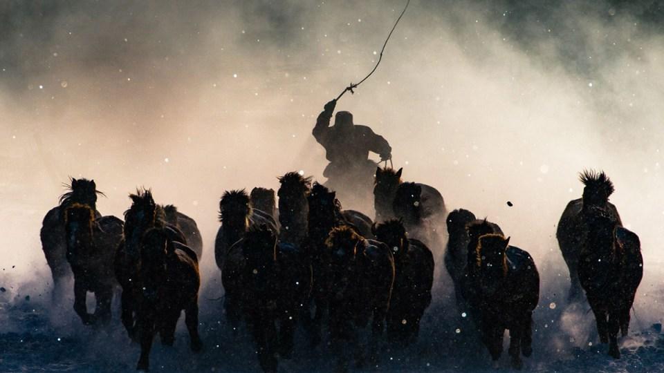 Anthony Lau'un büyük ödülü kazanan Winter Horseman adlı fotoğrafı
