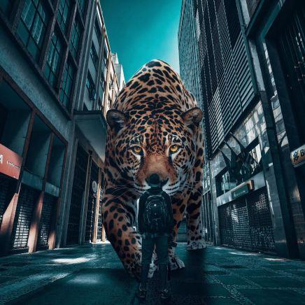 giant-animals-mani-photography-13