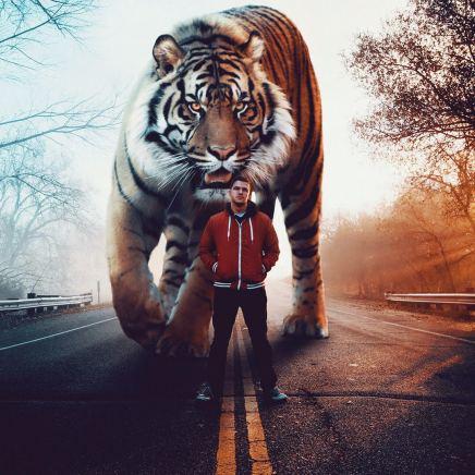 giant-animals-mani-photography-8