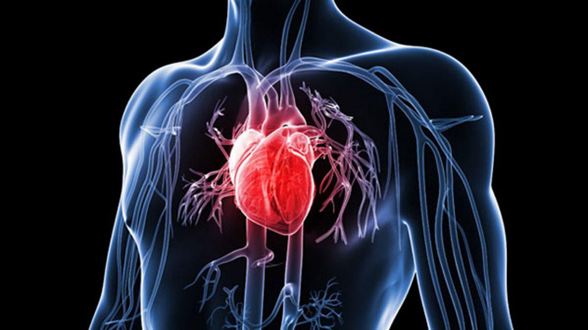 Kalp krizi riskinizi test edin