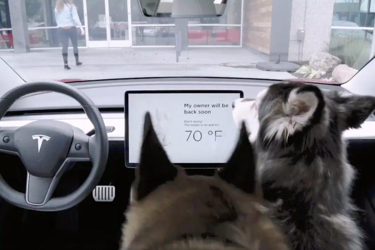 Tesla'nın 'köpek modu' arızası düzeltildi