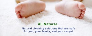 Natural Carpet Toilet Cleaning