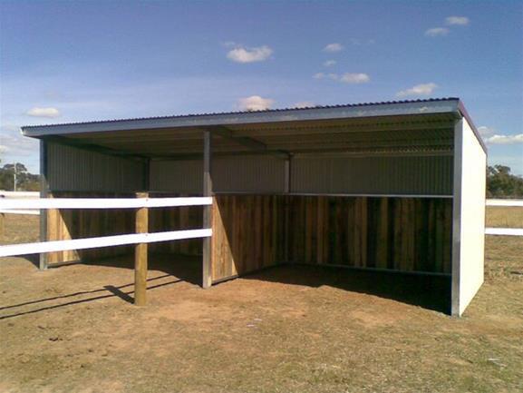 Horse Shelter DIY Ideas