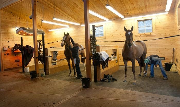 inside horse barns