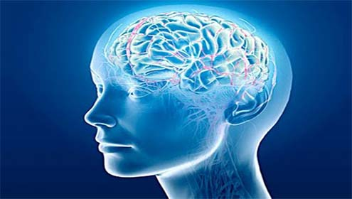 Chinese Scientists Ka Brain Database Tayaar Karny Ky Mansoobay Par Kam Jari