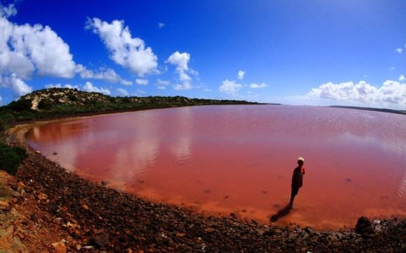 Lake Hillier pink lake most beautiful