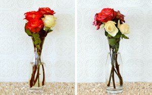 How to make flowers fresh