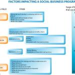 What impacts the success of a social business project (and who's responsible for what) ?