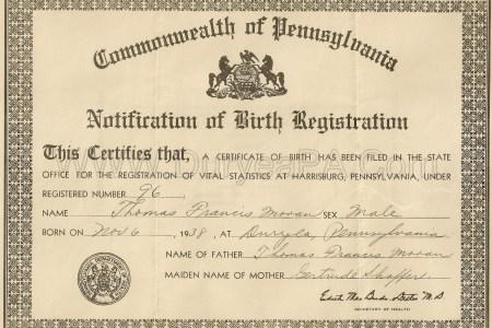 Free Resume 2018 » vitalchek com birth certificate | Free Resume
