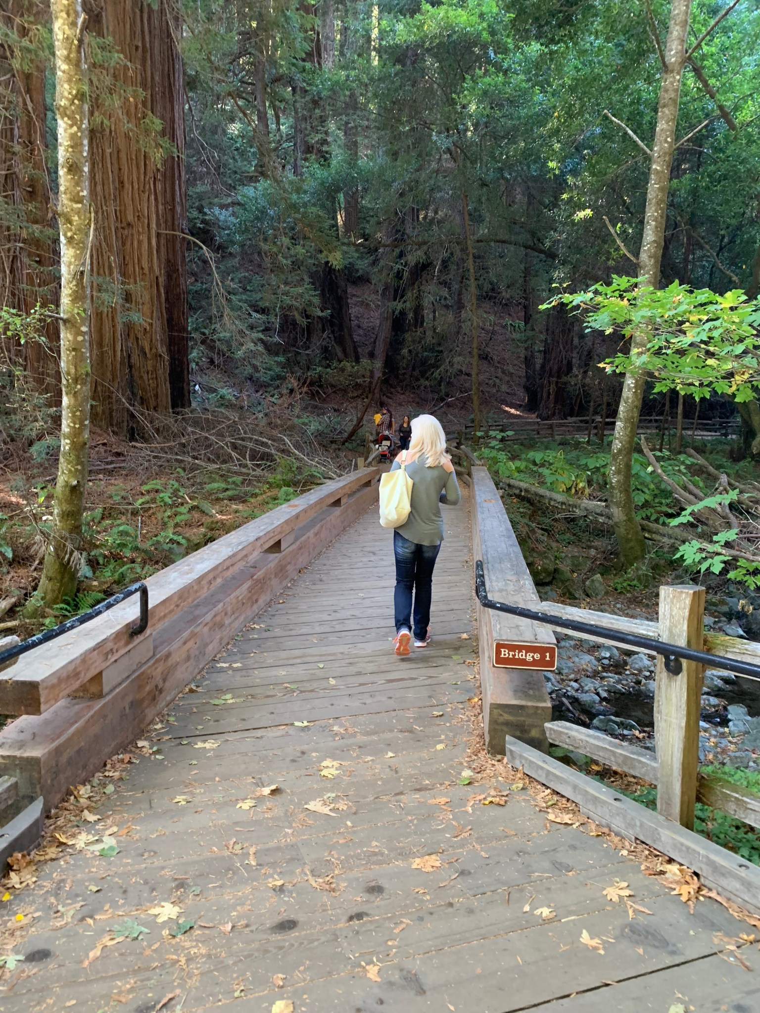 Bridge 1 Muir Woods
