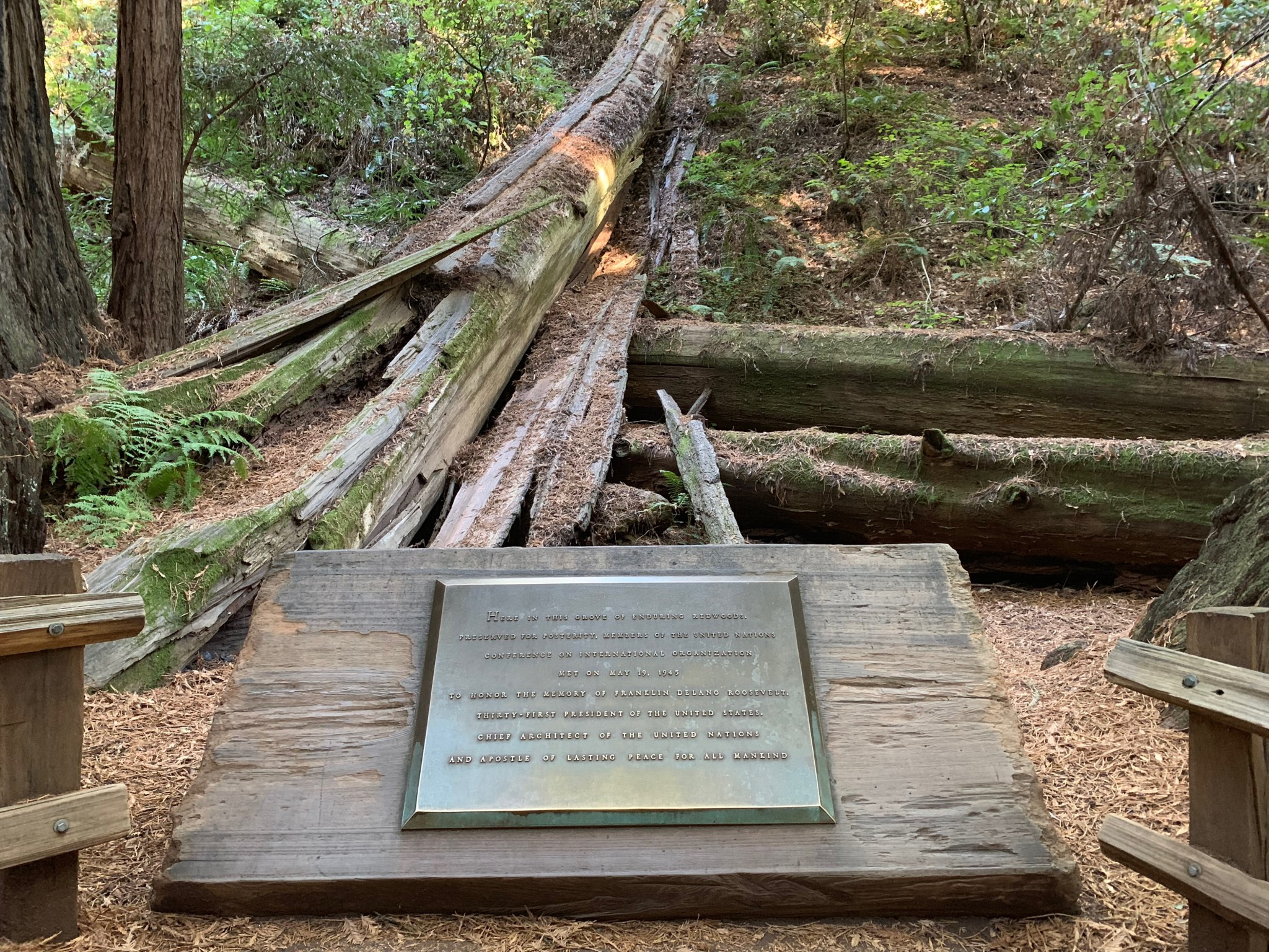 FDR plaque