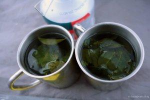 Koka-Tee