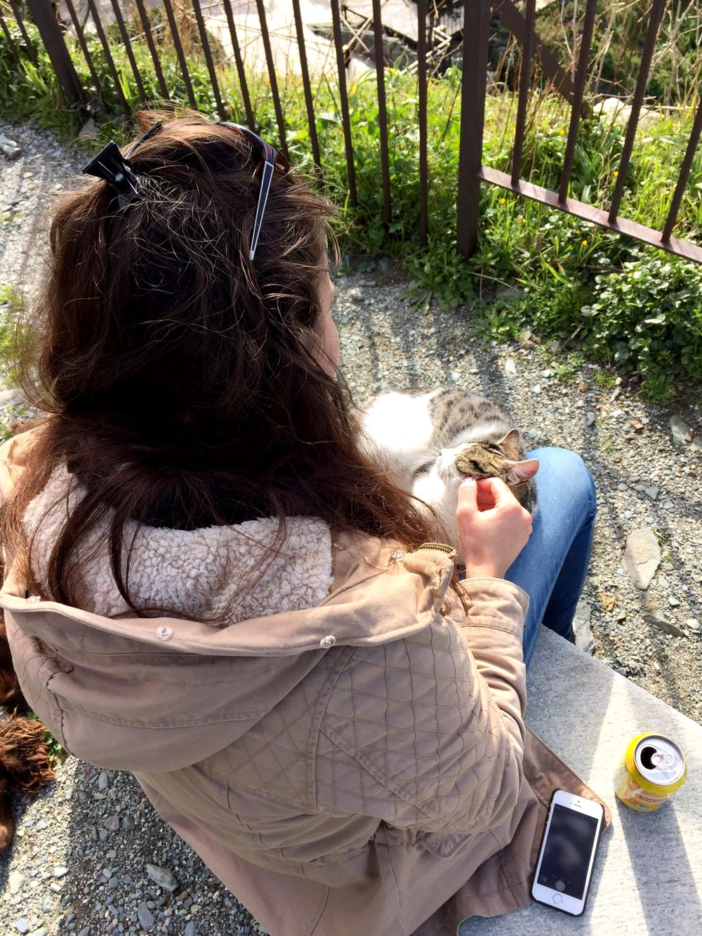 VILLAGE NONZA CORSE CORSICA TOURISME BLOG VOYAGE CHAT 15