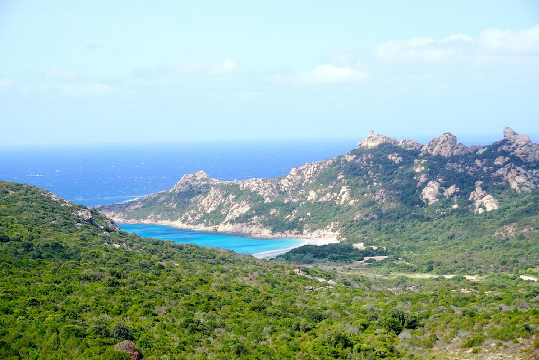 LION DE ROCCAPINA CORSE CORSICA PROPRIANO NATURE BLOG VOYAGE TOURISME ROAD TRIP 2