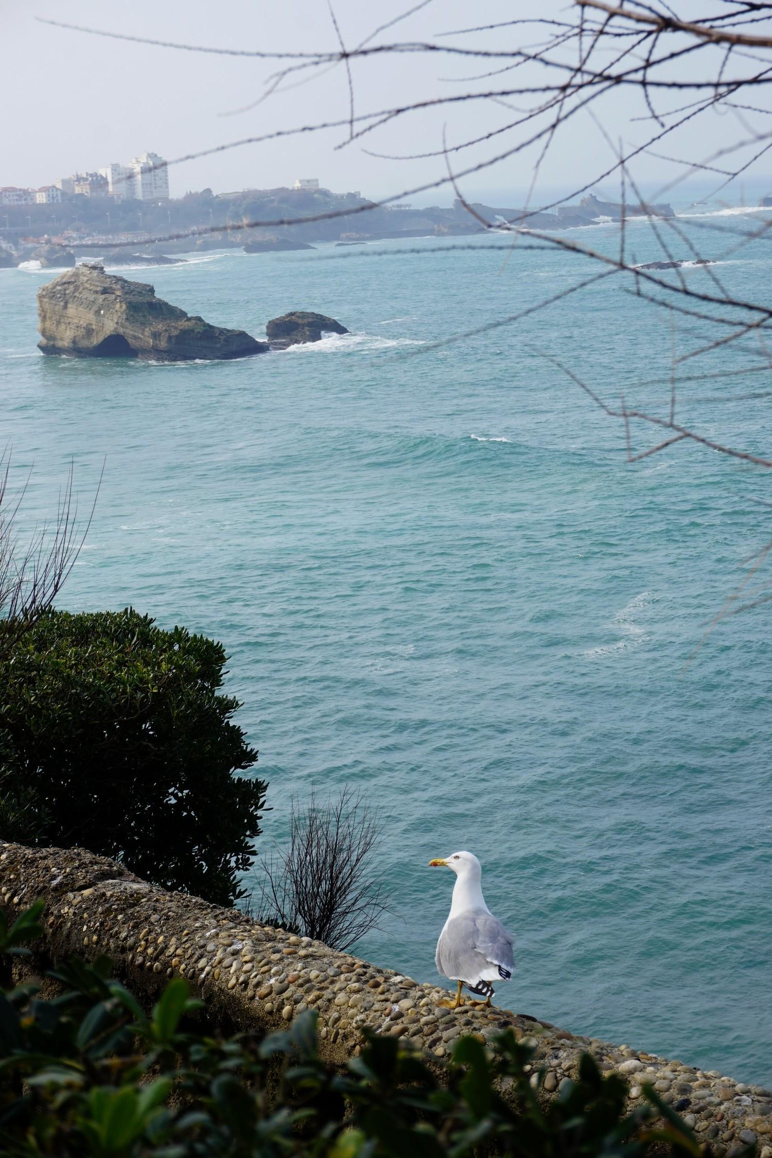 RANDONNEE PHARE DE BIARRITZ PAYS BASQUE BLOG COUPLE TOURISME VOYAGE FRANCE WEEK END EN AMOUREUX 21