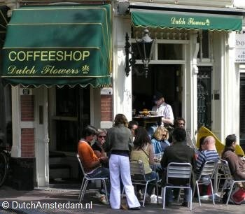 Amsterdam coffeeshop Dutch Flowers