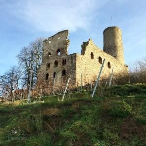 Castle & Vineyard