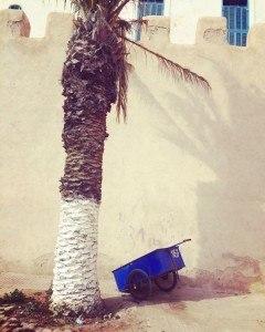 Enchanting Essaouira